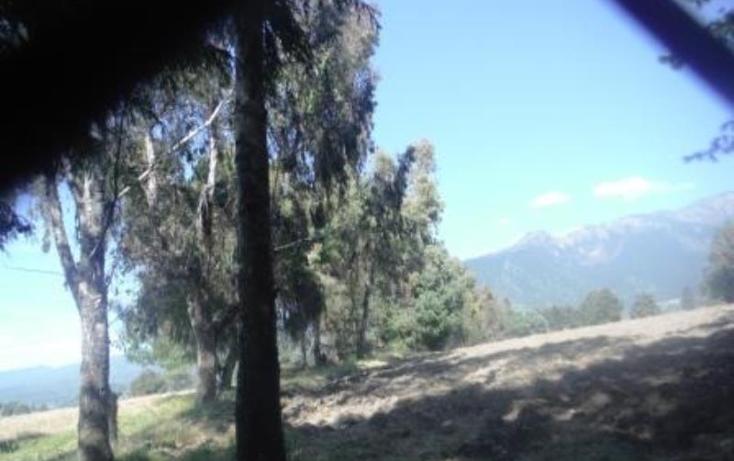 Foto de terreno habitacional en venta en  , san pedro nexapa, amecameca, m?xico, 1209237 No. 04