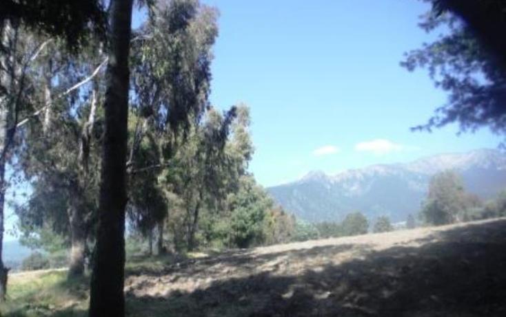 Foto de terreno habitacional en venta en  , san pedro nexapa, amecameca, m?xico, 1209237 No. 05