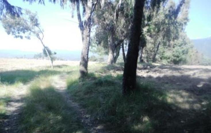 Foto de terreno habitacional en venta en  , san pedro nexapa, amecameca, m?xico, 1209237 No. 06