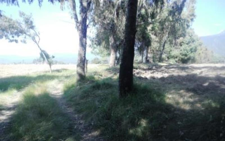 Foto de terreno habitacional en venta en  , san pedro nexapa, amecameca, m?xico, 1209237 No. 07