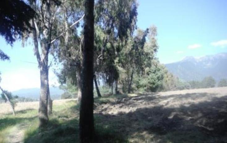 Foto de terreno habitacional en venta en  , san pedro nexapa, amecameca, m?xico, 1209237 No. 08