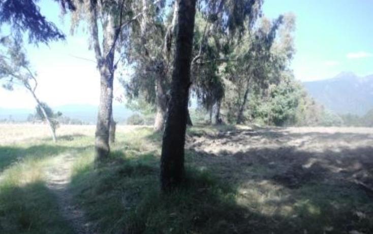 Foto de terreno habitacional en venta en  , san pedro nexapa, amecameca, m?xico, 1209237 No. 09