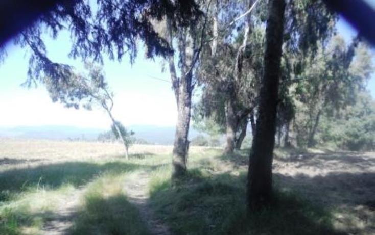 Foto de terreno habitacional en venta en  , san pedro nexapa, amecameca, m?xico, 1209237 No. 11