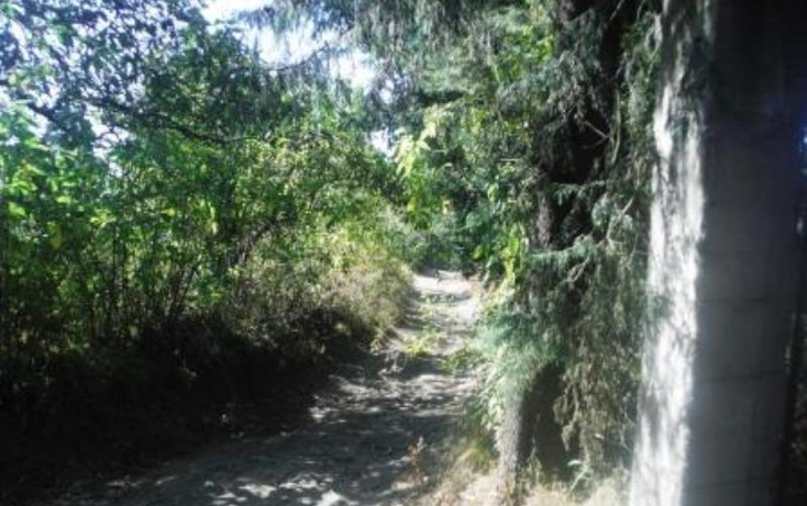 Foto de terreno habitacional en venta en  , san pedro nexapa, amecameca, m?xico, 1209237 No. 13