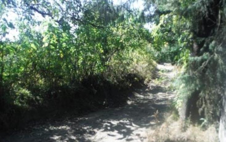 Foto de terreno habitacional en venta en  , san pedro nexapa, amecameca, m?xico, 1209237 No. 14