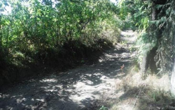 Foto de terreno habitacional en venta en  , san pedro nexapa, amecameca, m?xico, 1209237 No. 15