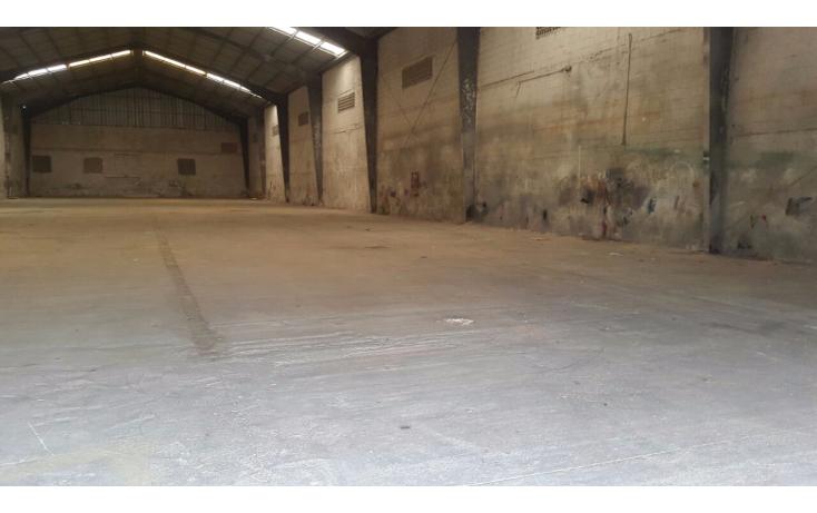 Foto de nave industrial en venta en  , san pedro noh pat, kanasín, yucatán, 1271901 No. 09