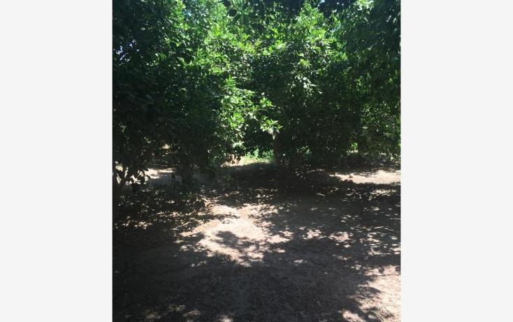 Foto de rancho en venta en san pedro , san pedro el saucito, hermosillo, sonora, 1984760 No. 06