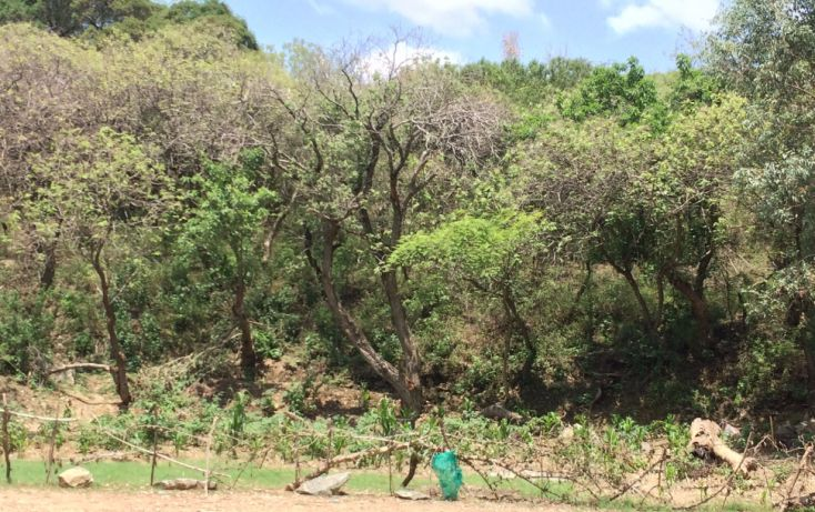 Foto de terreno habitacional en venta en, san pedro tecomatepec, ixtapan de la sal, estado de méxico, 1300139 no 09
