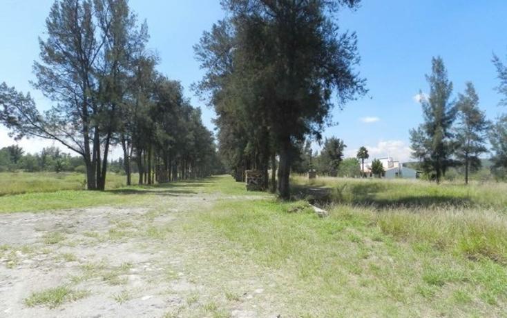 Foto de terreno habitacional en venta en  , san pedro tenango, apaseo el grande, guanajuato, 2733300 No. 09