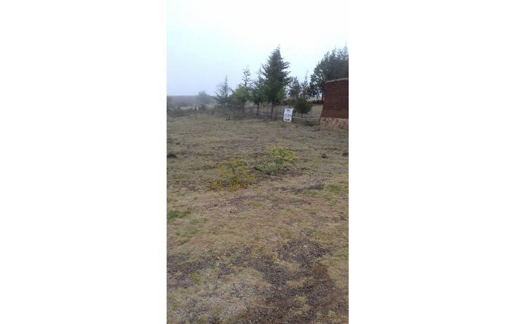 Foto de terreno habitacional en venta en  , san pedro tlachichilco, acaxochitlán, hidalgo, 1859356 No. 05
