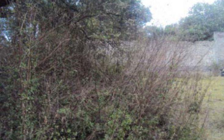 Foto de terreno habitacional en venta en, san pedro, tlalmanalco, estado de méxico, 2020527 no 04