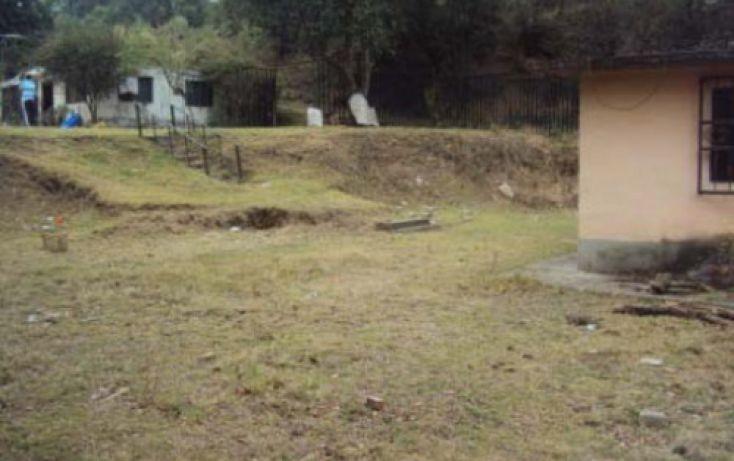 Foto de casa en venta en, san pedro, tlalmanalco, estado de méxico, 2020529 no 03