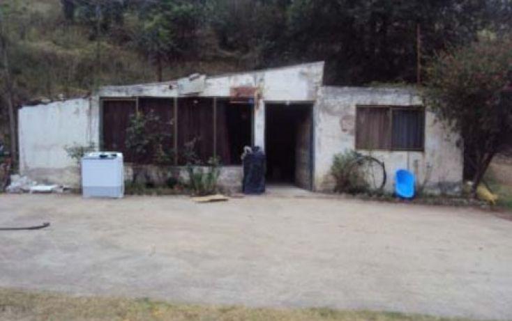 Foto de casa en venta en, san pedro, tlalmanalco, estado de méxico, 2020529 no 04