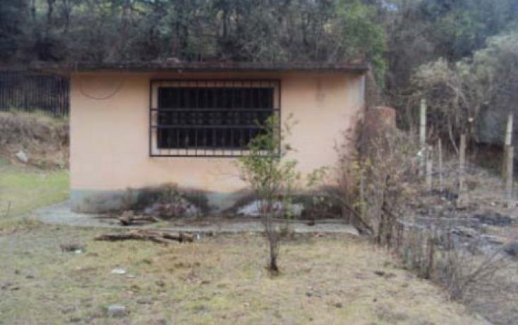 Foto de casa en venta en, san pedro, tlalmanalco, estado de méxico, 2020529 no 05