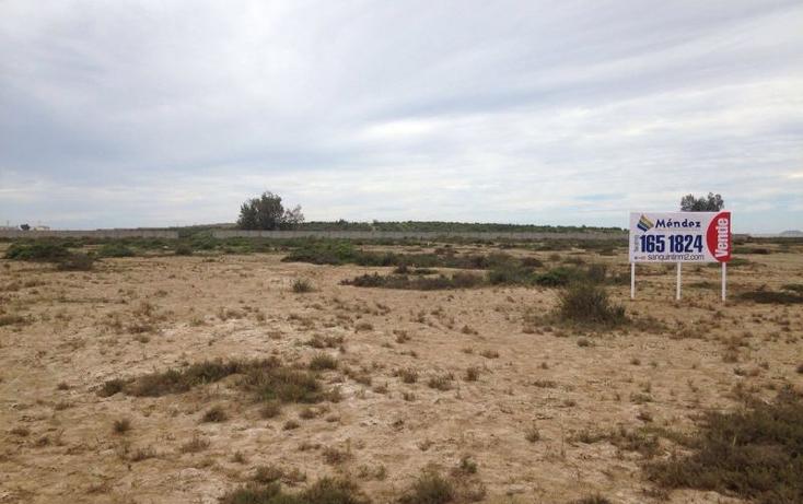 Foto de terreno comercial en venta en  , san quint?n, ensenada, baja california, 1575586 No. 02