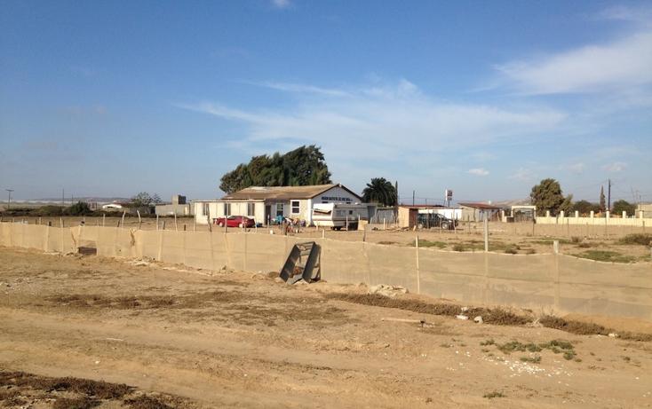 Foto de terreno comercial en venta en  , san quint?n, ensenada, baja california, 1575586 No. 10