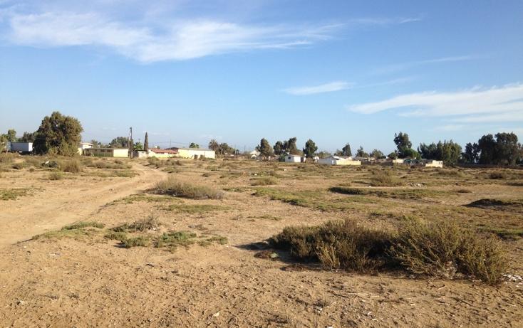 Foto de terreno comercial en venta en  , san quint?n, ensenada, baja california, 1575586 No. 11