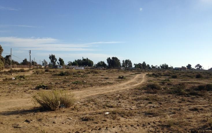 Foto de terreno comercial en venta en  , san quint?n, ensenada, baja california, 1575586 No. 12