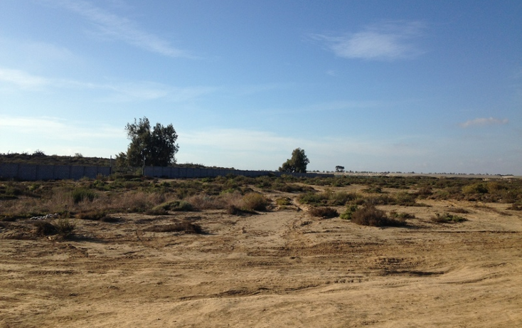 Foto de terreno comercial en venta en  , san quint?n, ensenada, baja california, 1575586 No. 16