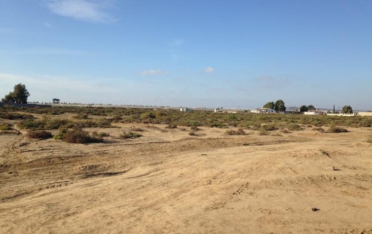 Foto de terreno comercial en venta en  , san quint?n, ensenada, baja california, 1575586 No. 17