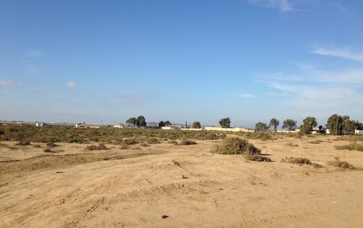 Foto de terreno comercial en venta en  , san quint?n, ensenada, baja california, 1575586 No. 18