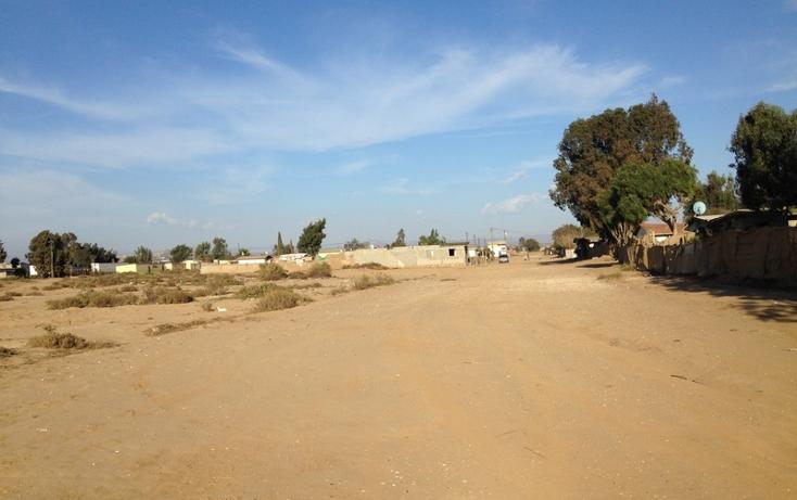 Foto de terreno comercial en venta en  , san quint?n, ensenada, baja california, 1575586 No. 19