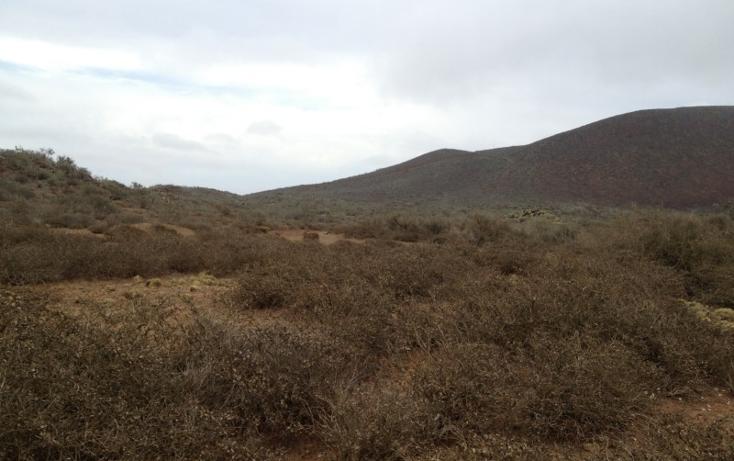 Foto de terreno habitacional en venta en  , san quint?n, ensenada, baja california, 450720 No. 11