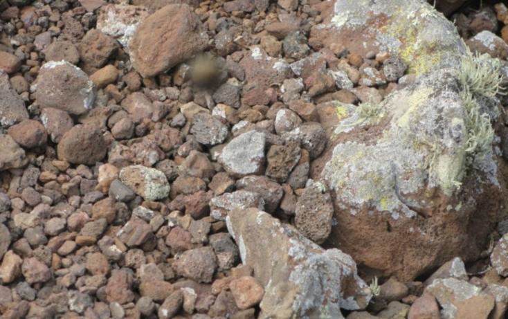 Foto de terreno habitacional en venta en  , san quintín, ensenada, baja california, 450731 No. 02