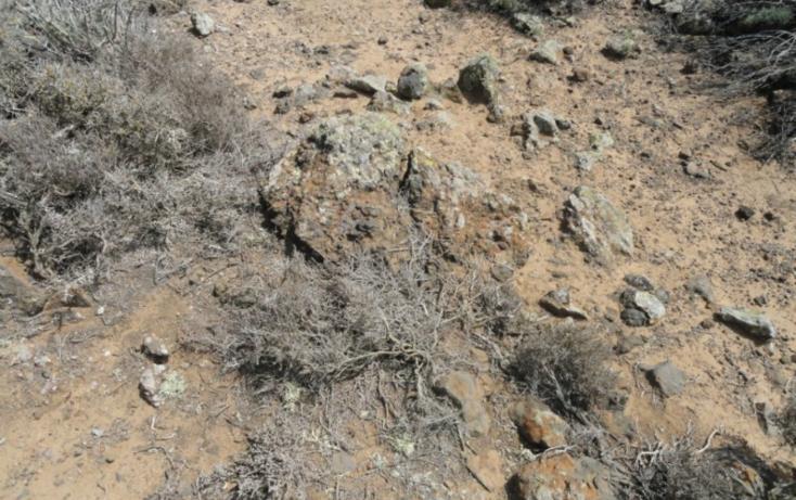 Foto de terreno habitacional en venta en  , san quintín, ensenada, baja california, 450731 No. 06