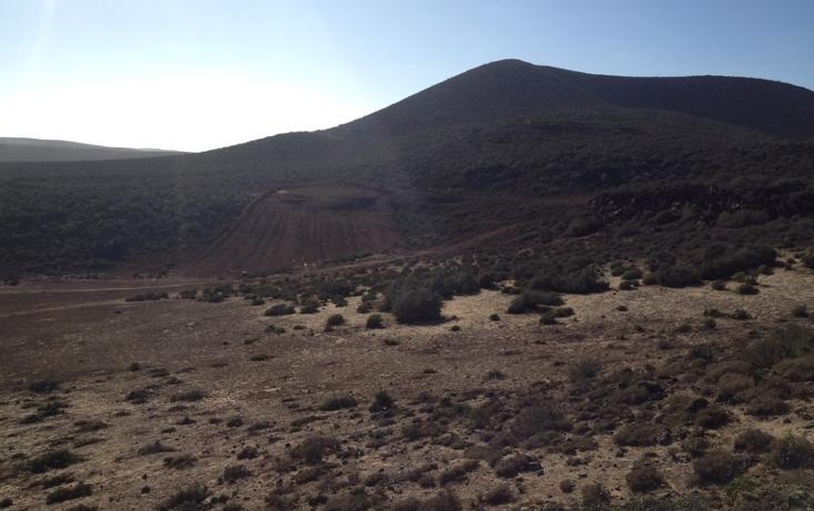 Foto de terreno habitacional en venta en  , san quintín, ensenada, baja california, 450731 No. 14