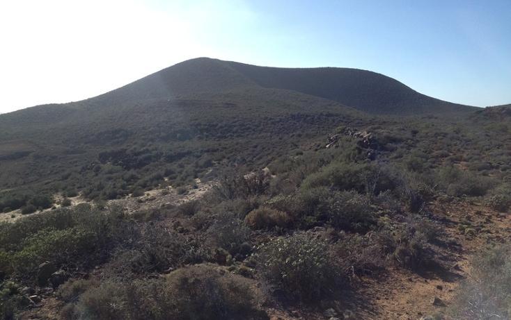 Foto de terreno habitacional en venta en  , san quintín, ensenada, baja california, 450731 No. 16