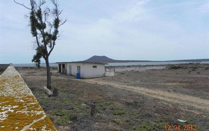 Foto de terreno habitacional en venta en  , san quint?n, ensenada, baja california, 450734 No. 05