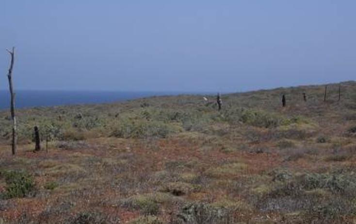 Foto de terreno habitacional en venta en  , san quintín, ensenada, baja california, 450769 No. 01