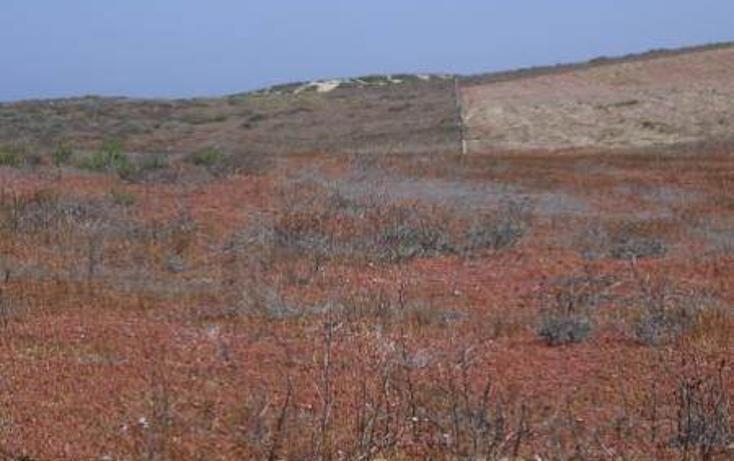 Foto de terreno habitacional en venta en  , san quintín, ensenada, baja california, 450769 No. 03
