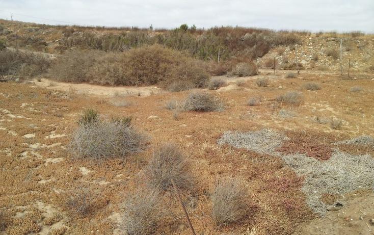 Foto de terreno habitacional en venta en  , san quintín, ensenada, baja california, 532359 No. 08