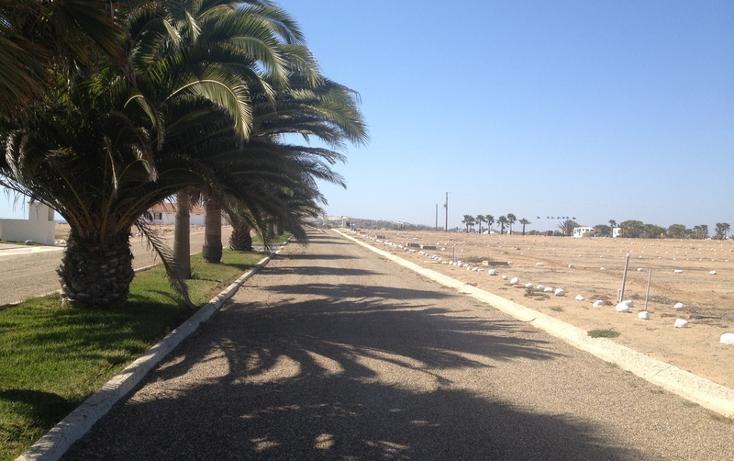 Foto de terreno habitacional en venta en  , san quintín, ensenada, baja california, 532694 No. 03
