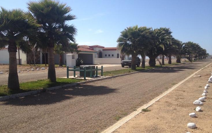 Foto de terreno habitacional en venta en  , san quintín, ensenada, baja california, 532694 No. 08