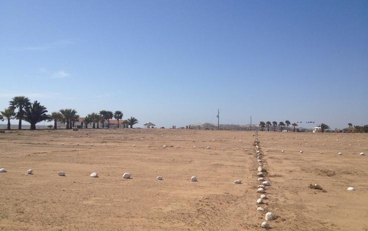 Foto de terreno habitacional en venta en  , san quintín, ensenada, baja california, 532694 No. 15