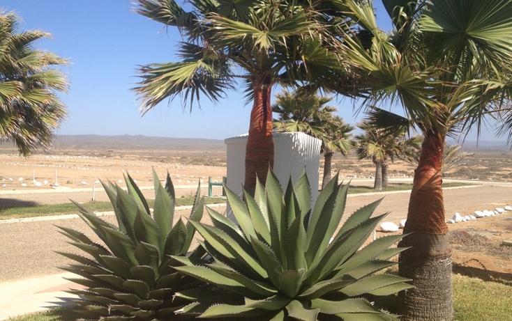 Foto de terreno habitacional en venta en  , san quintín, ensenada, baja california, 532694 No. 20
