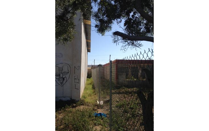 Foto de nave industrial en renta en  , san quint?n, ensenada, baja california, 834237 No. 14