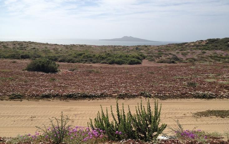 Foto de terreno habitacional en venta en  , san quintín, ensenada, baja california, 855271 No. 01