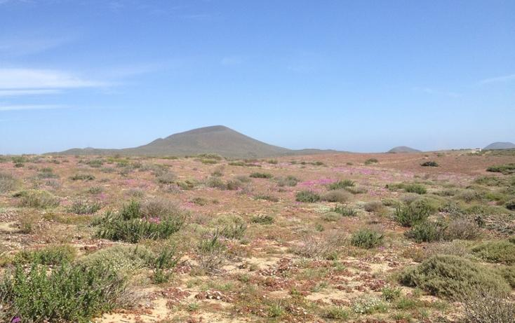 Foto de terreno habitacional en venta en  , san quintín, ensenada, baja california, 855271 No. 02