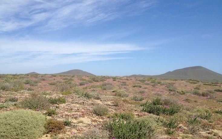 Foto de terreno habitacional en venta en  , san quintín, ensenada, baja california, 855271 No. 06