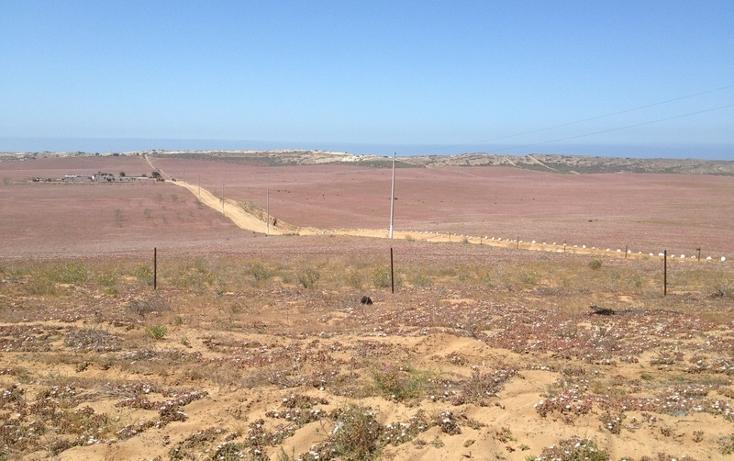 Foto de terreno comercial en venta en  , san quintín, ensenada, baja california, 877835 No. 02