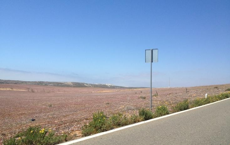 Foto de terreno comercial en venta en  , san quintín, ensenada, baja california, 877835 No. 11