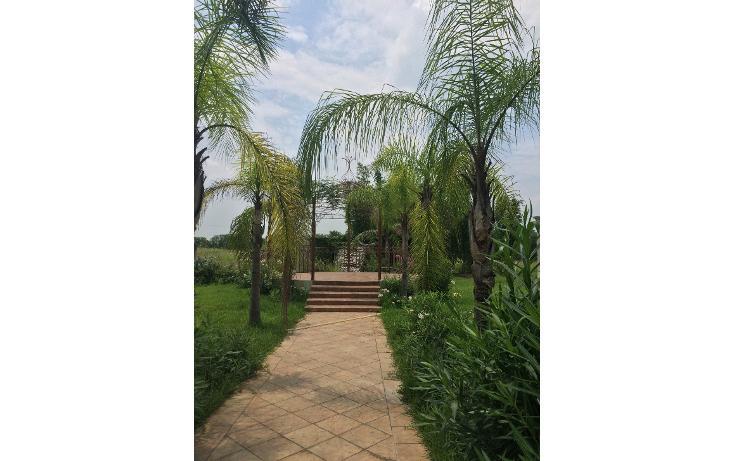Foto de rancho en venta en  , san rafael, cadereyta jiménez, nuevo león, 1238273 No. 55