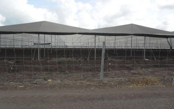 Foto de terreno comercial en venta en, san rafael de costa rica, culiacán, sinaloa, 1066879 no 03