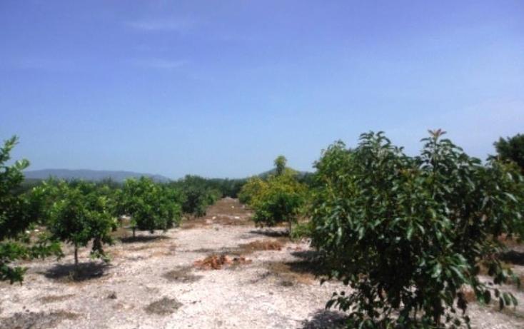 Foto de terreno habitacional en venta en  , san rafael zaragoza, tlaltizapán de zapata, morelos, 1574584 No. 02