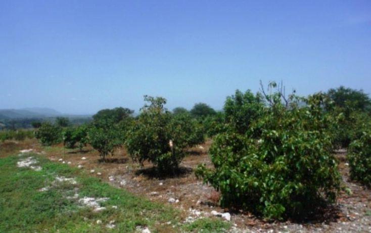 Foto de terreno habitacional en venta en, san rafael zaragoza, tlaltizapán de zapata, morelos, 1574584 no 04